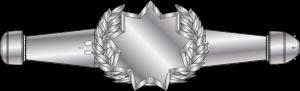 Award_RMN_Space_Warfare_Qual_Enlisted