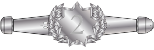 Award_RMN_Space_Warfare_Qual_Enlisted_2