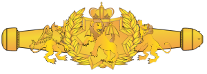 Award_RMN_Space_Warfare_Qual_Officer