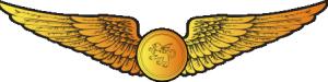 RMN Basic Observer Wings