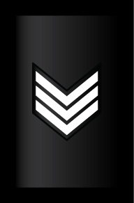 Rank_RMN_E-6_Sleeve_Command