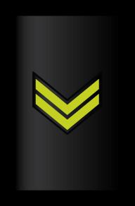 Rank_RMN_E-5_Sleeve